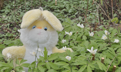 04-2010_ostern.png